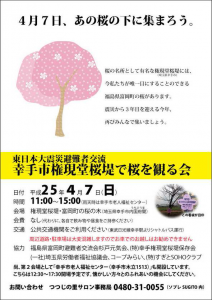幸手市権現堂桜堤で桜を観る会